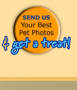 Send Us YOur Best Photos and Get a Treat!